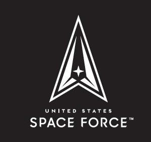 Space Force Flag - Black