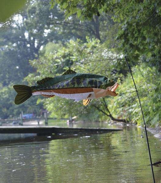 Swimming Fish - Bass
